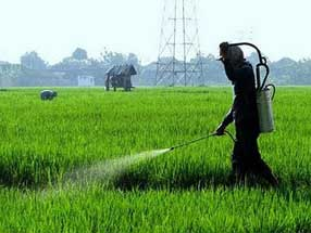 penggunaan cara tips pestisida nabati pdf, pestisida decis, pestisida hayati, pestisida ddt, pestisida organik, pestisida nabati, pestisida dan aplikasinya, pestisida ramah lingkungan