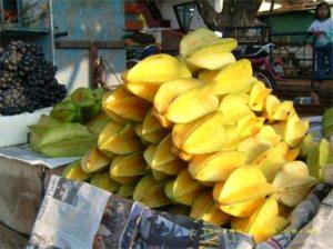 ciri buah belimbing, jenis akar buah belimbing, macam-macam jenis buah belimbing manis, jenis dan ciri-ciri buah belimbing