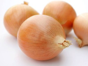 bibit bawang unggul, bibit unggul bawang merah, bibit unggul bawang, jenis-jenis bawang, klasifikasi bawang, jenis bawang unggulan, jenis jenis bawang bombay
